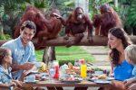 [オプショナルツアー]ラウータンと一緒にご朝食:バリ ズー(バリ動物公園)