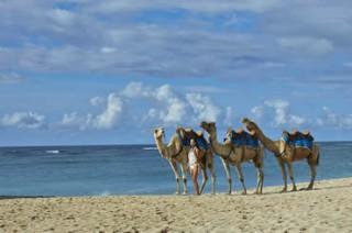 ヌサドゥアビーチのキャメルライド(イメージ)/ザ・リッツ・カールトンバリ
