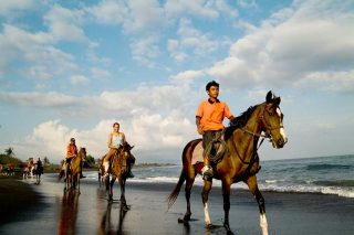 乗馬体験(イメージ)