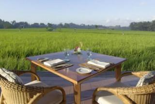 ライスフィールドを眺めながら朝食を/ザ チェディ クラブ アット タナガジャ ウブド