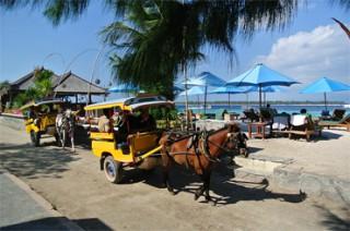 島内の移動は馬車か自転車