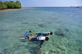 シュノーケリングも楽しめる美しい海
