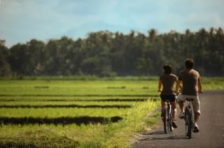 レンタルサイクルで自由に散歩(イメージ)