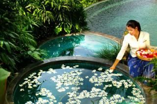 各種用途別のプールが用意されている/ピタマハ チャンプアン リゾート&スパ